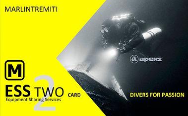 ESS_TWO_CARD.jpg