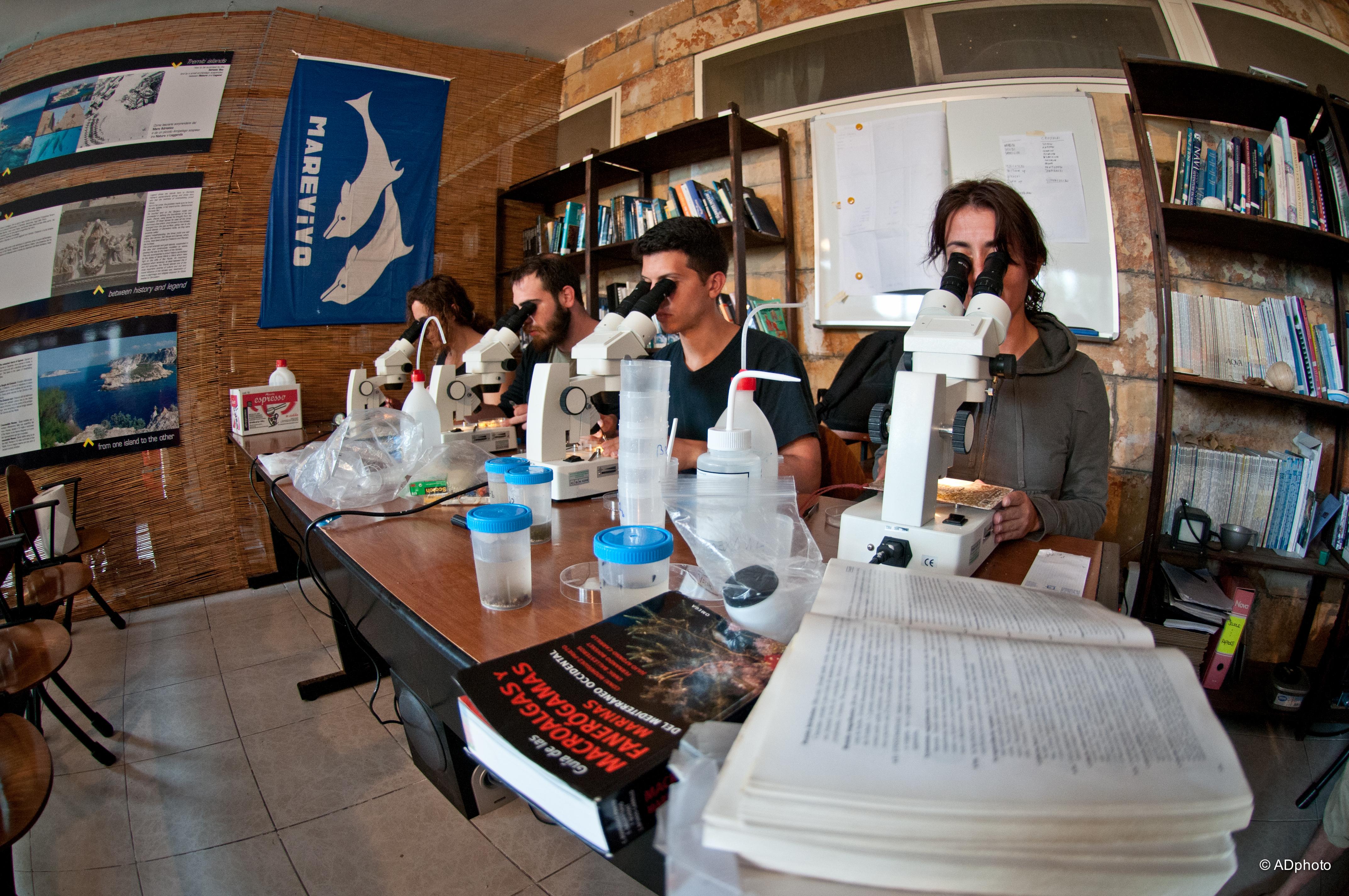 Il Laboratorio del Mare
