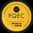 PQEC 2019.png