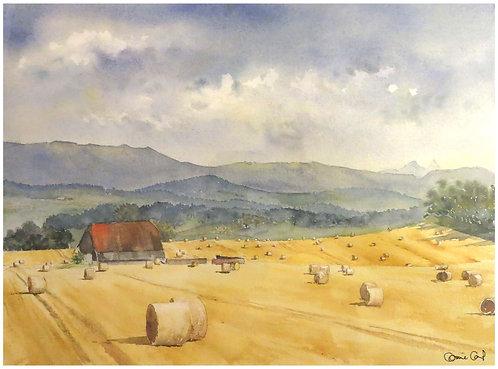 Fenaison à Matran 34,5x25 cm