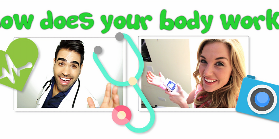 How does your Body Work?