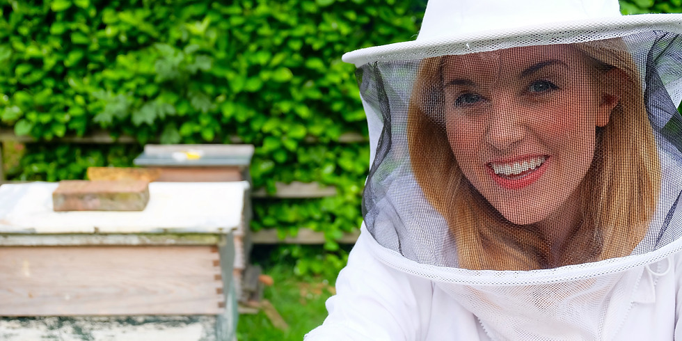 Cheltenham Science Festival: Busy Bees!