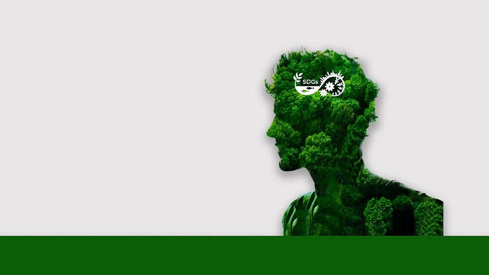 img-sfondo-green-utility.jpg