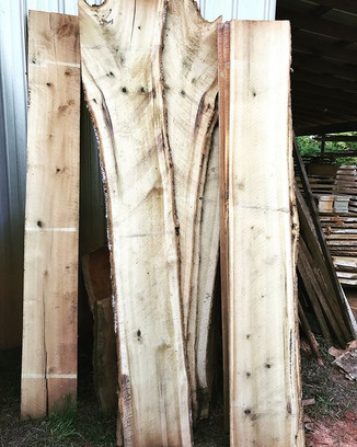 I've got a lot of Poplar!! Some of it is