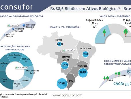 Valor dos Ativos Biológicos no Brasil em 2020