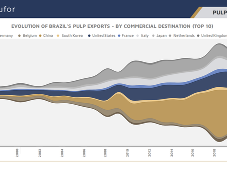 Destination of Brazilian Pulp Exports