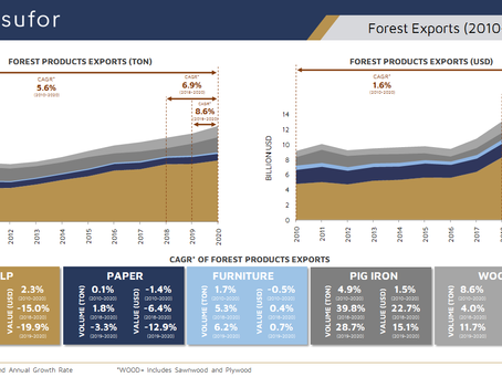 Brazilian Forest Exports (2010 - 2020)