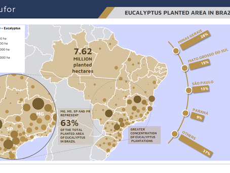 EUCALYPTUS PLANTED AREA IN BRAZIL (2019)