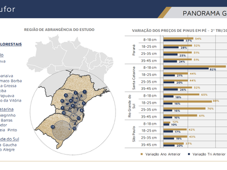 Panorama das Avaliações Econômicas Realizadas pela Consufor