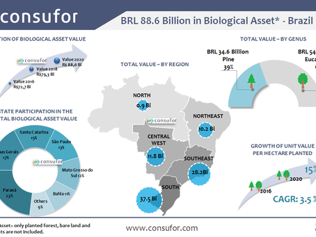 Biological Assets Value in Brazil