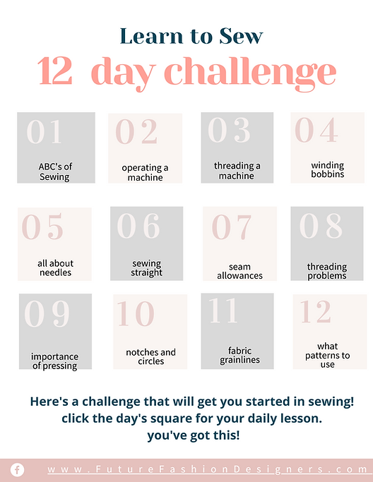 12 day challenge .png