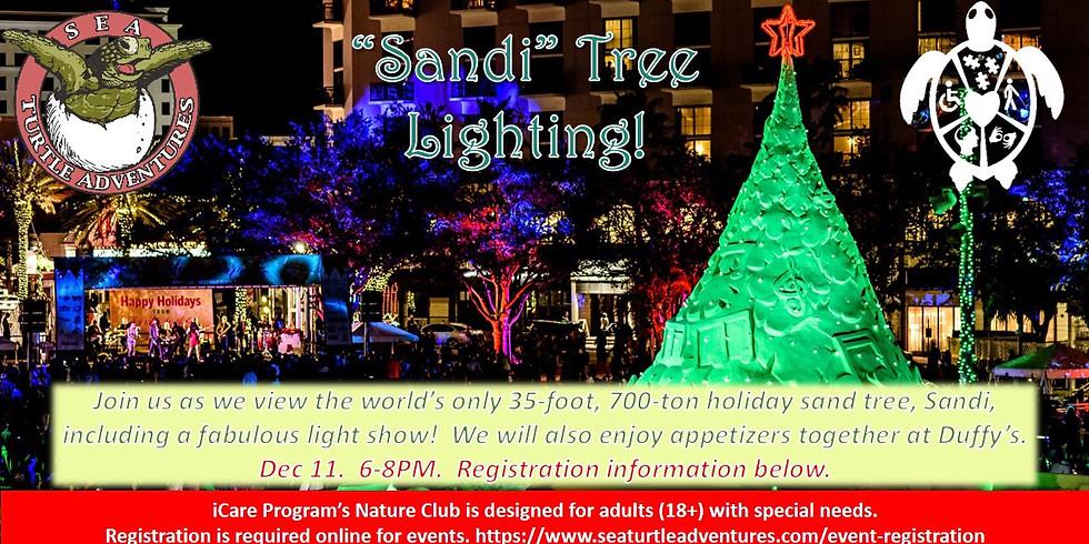 Sandi Tree Lighting!