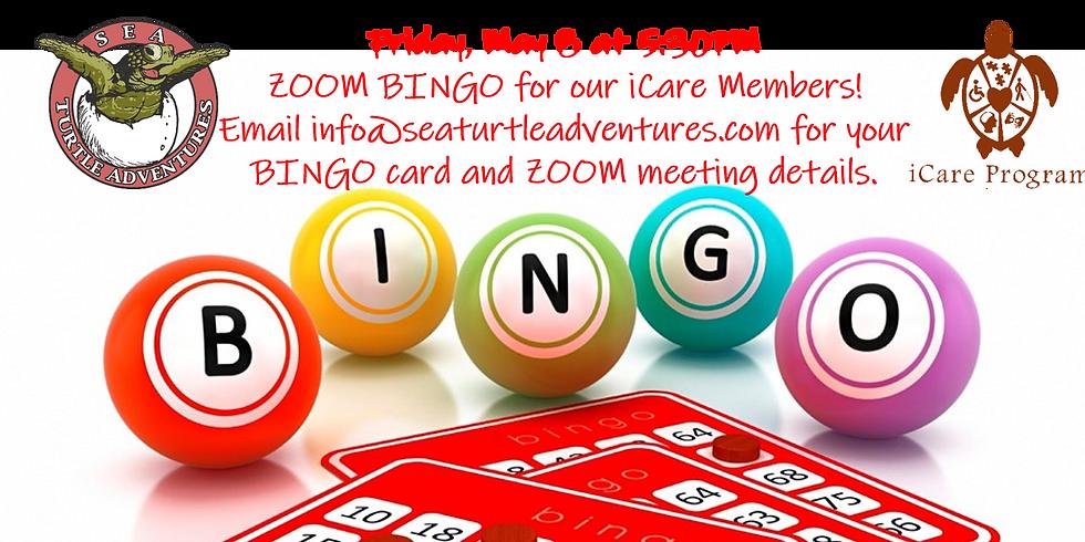 Friday Night Zoom Bingo!
