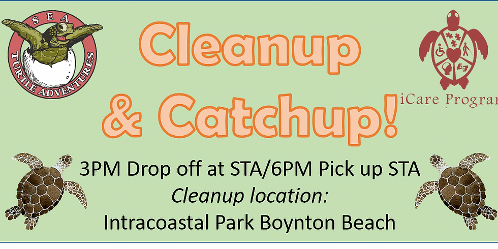 Cleanup and Catchup: Nov 5