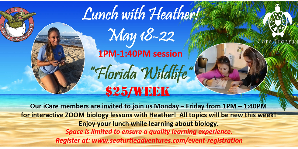 Lunch with Heather: 1-1:40PM Session: Florida Wildlife!