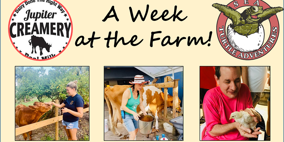 A Week at the Farm: 13-17 years old