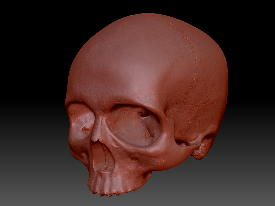 Skull_3.PNG