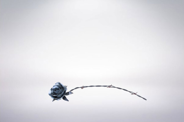Barbed Wire Rose.jpg