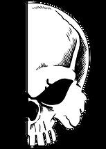 half skull-03.png