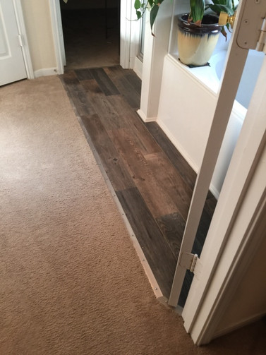 guest bathroom with wood floor
