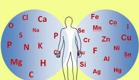 Bədənimizi təşkil edən elementlər.