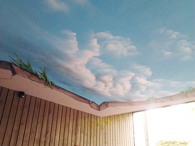 Ceilingpaint_11.jpg