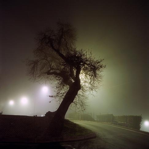 montecchi-still_1.jpg