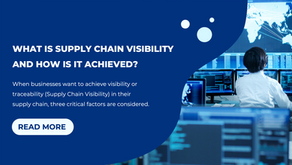 What Is Supply Chain Visibility And How Is It Achieved?