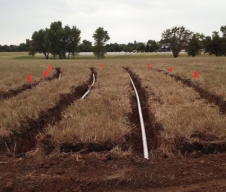 eta-septic-field-3.jpg