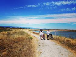 Shoreline at CA