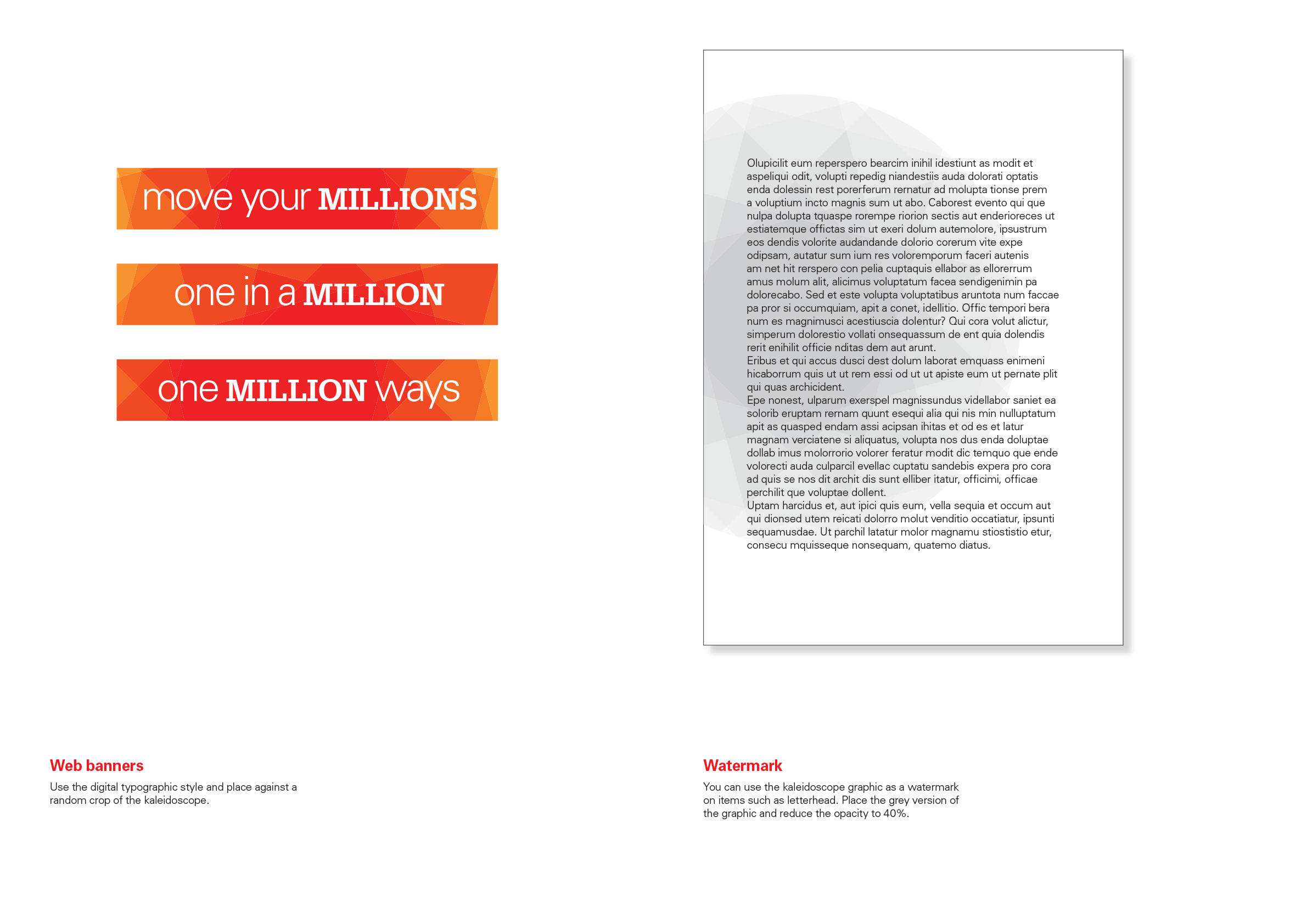 MILLIONS campaign guidelines-5