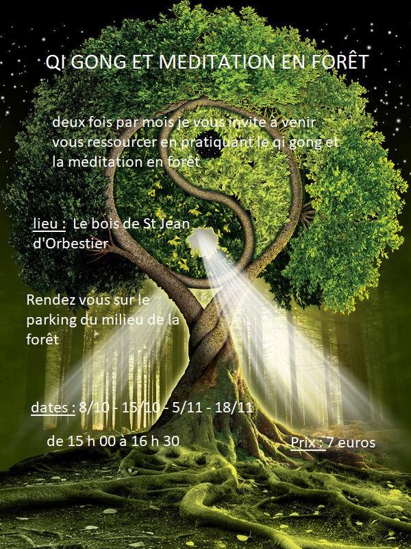 qi_gong_en_forêt_3.jpg