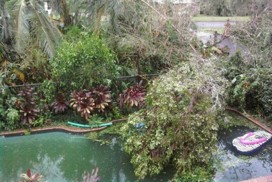 Florida swimming pool debris removal and restoration