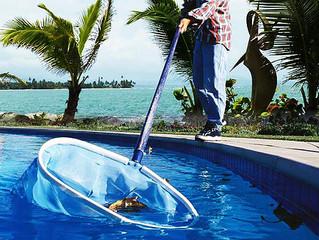 Maintain a Healthy Pool - Sarasota