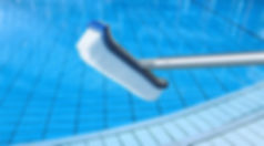 pool brush.jpg