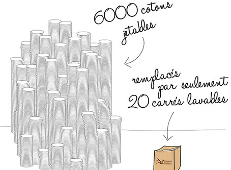 Coton jetable vs lavable