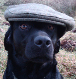 'I am too beautiful to need a hat'