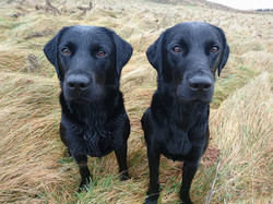 Inca on right with sister Pippa