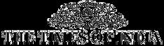 TOI-Logo