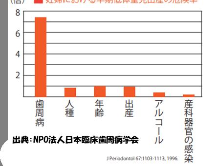 デンタルニュース 11月号