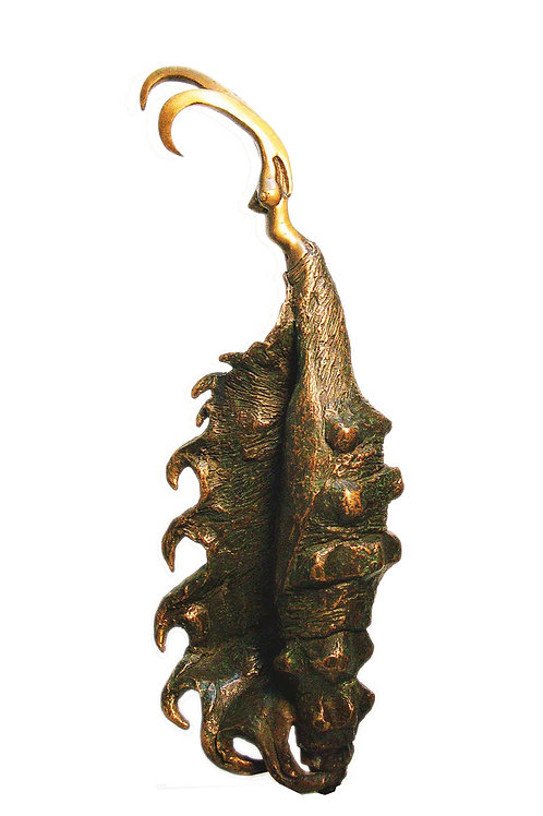 figura caracol