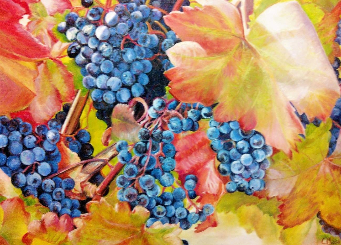 Uvas en Valdevimbre
