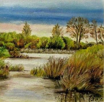 Laguna de Villadangos 2