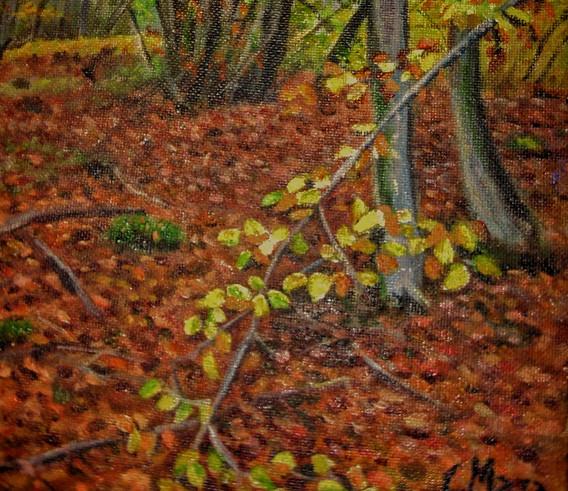 Rama en el bosque