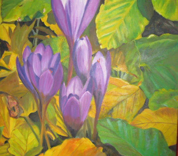 Flores entre la hojarasca