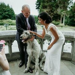 Markree Castle Wedding - Komal