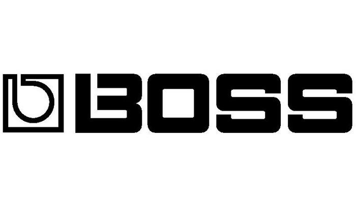 DESTINY & BOSS Partnership | Destiny Petrel's Website