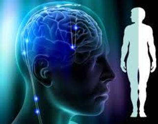 neurologica.jpg