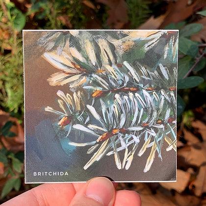 Sticker: Winter Twig 9