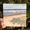 Thumbnail: Print: Ocean 7